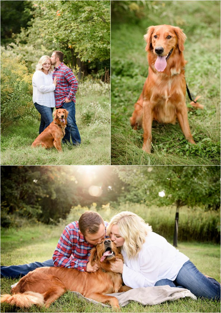 Engagement session with dog in a field with backlighting.