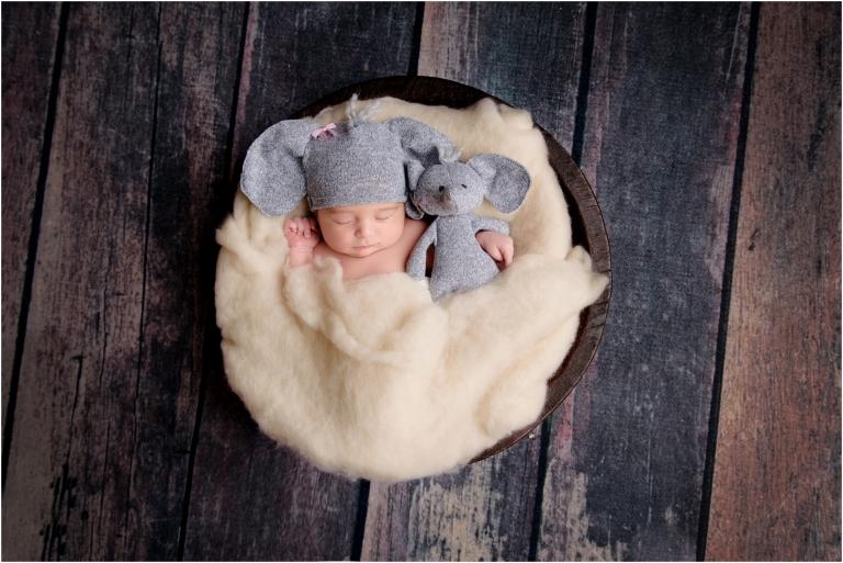 nepa newborn photographer