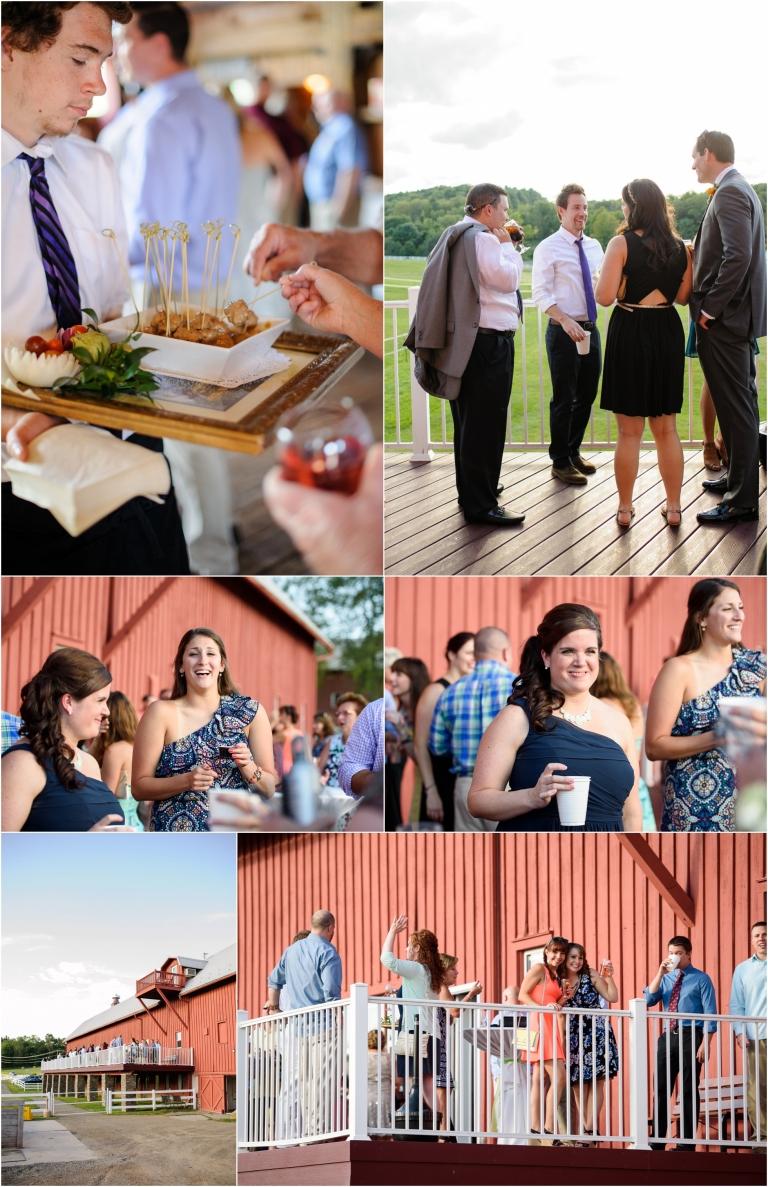 Friedman Farms Wedding Dallas Pa Crystal Satriano